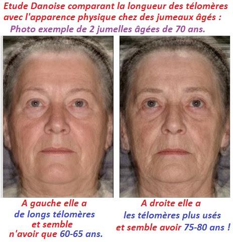 utilisation des telomerases d epitalon